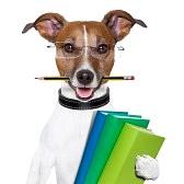 18546050-cane-di-scuola-con-libri-e-una-matita